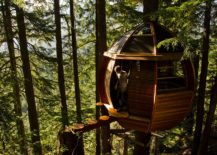 A-small-treehouse-high-above-the-ground-217x155