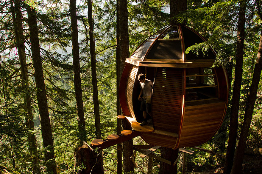 A small treehouse high above the ground