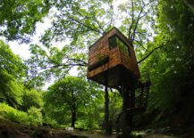 A-tiny-treehouse-blends-in-with-the-trees-217x155