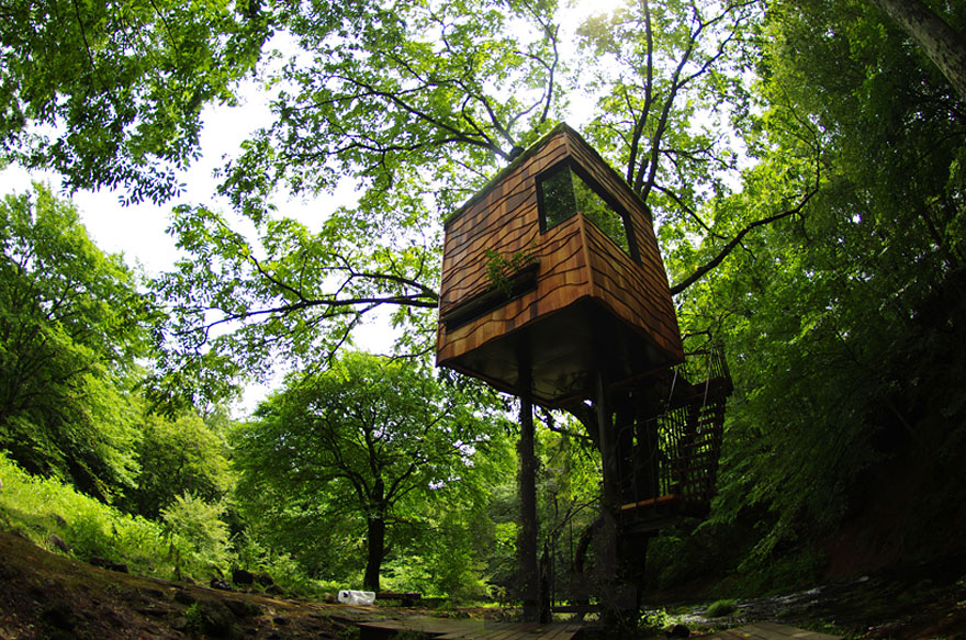 A tiny treehouse blends in with the trees