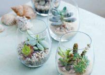 Coastal-chic-DIY-terrarium-idea-217x155