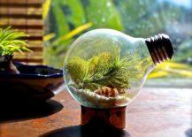 DIY-Light-Bulb-Air-Plant-Terrarium-217x155