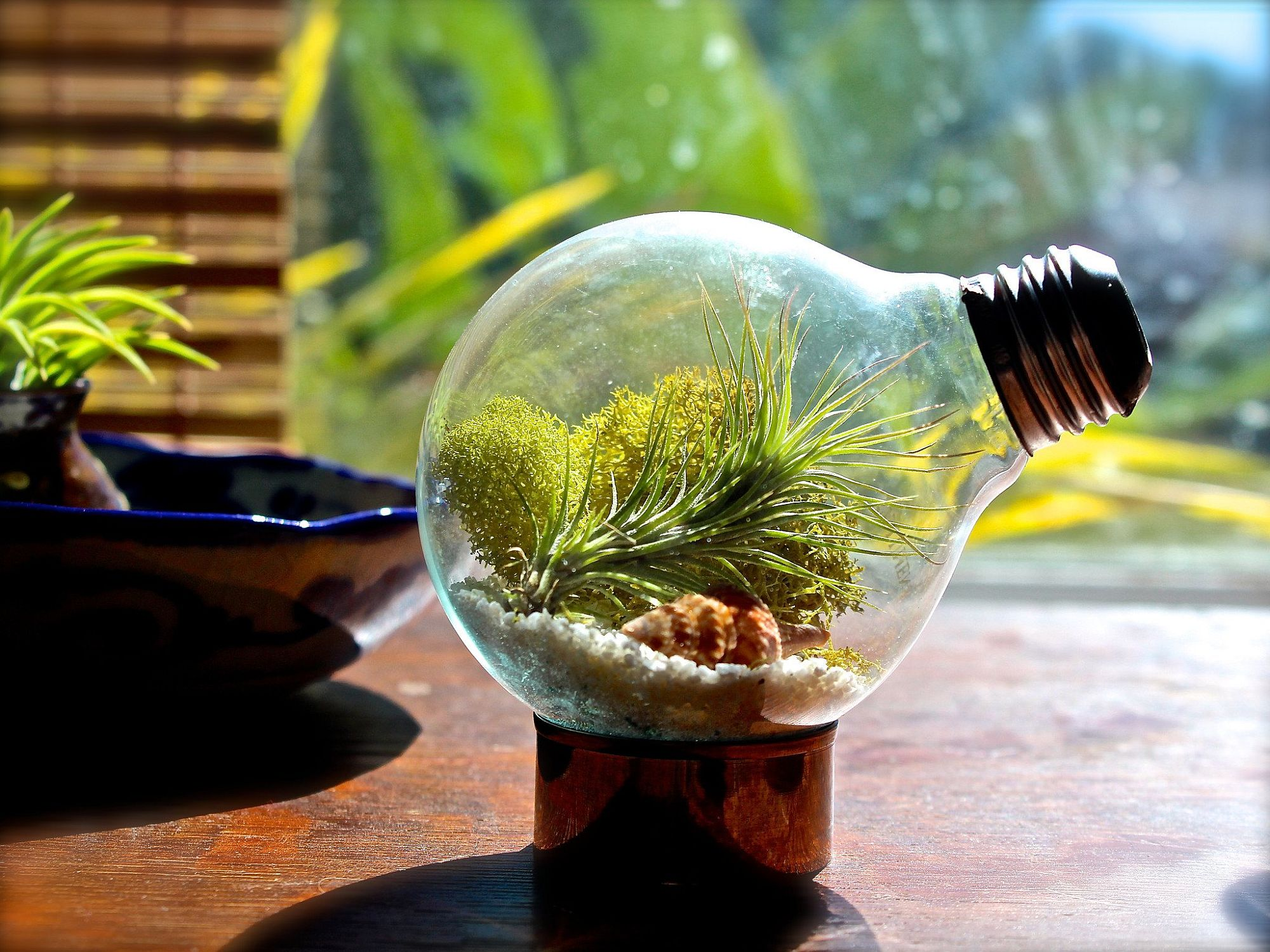15 delightfully diverse diy terrarium ideas tiny green delights. Black Bedroom Furniture Sets. Home Design Ideas