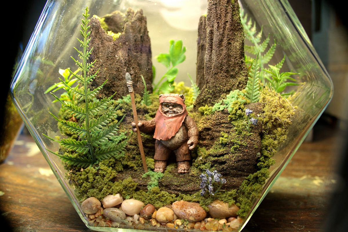 15 Delightfully Diverse Diy Terrarium Ideas Tiny Green