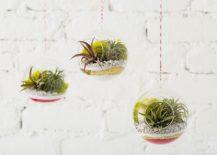 DIY-sand-art-terrarium-217x155