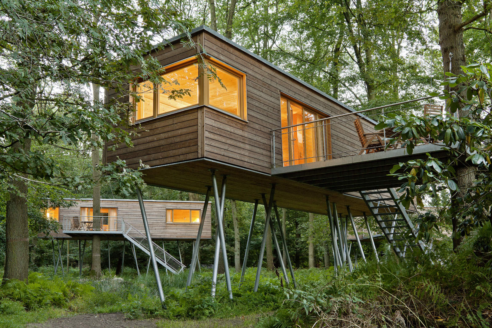 Gracefully built wooden treehouses in a forest