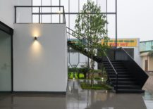 Greenery-brings-freshness-to-the-modern-office-217x155