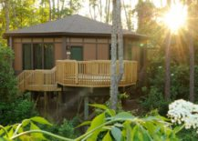 Modern-treehouse-with-a-light-fenced-deck--217x155