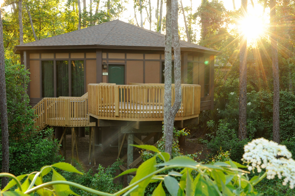 Modern treehouse with a light fenced deck
