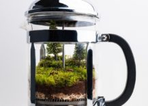 Old-coffee-pot-turned-into-a-lovely-terrarium-217x155