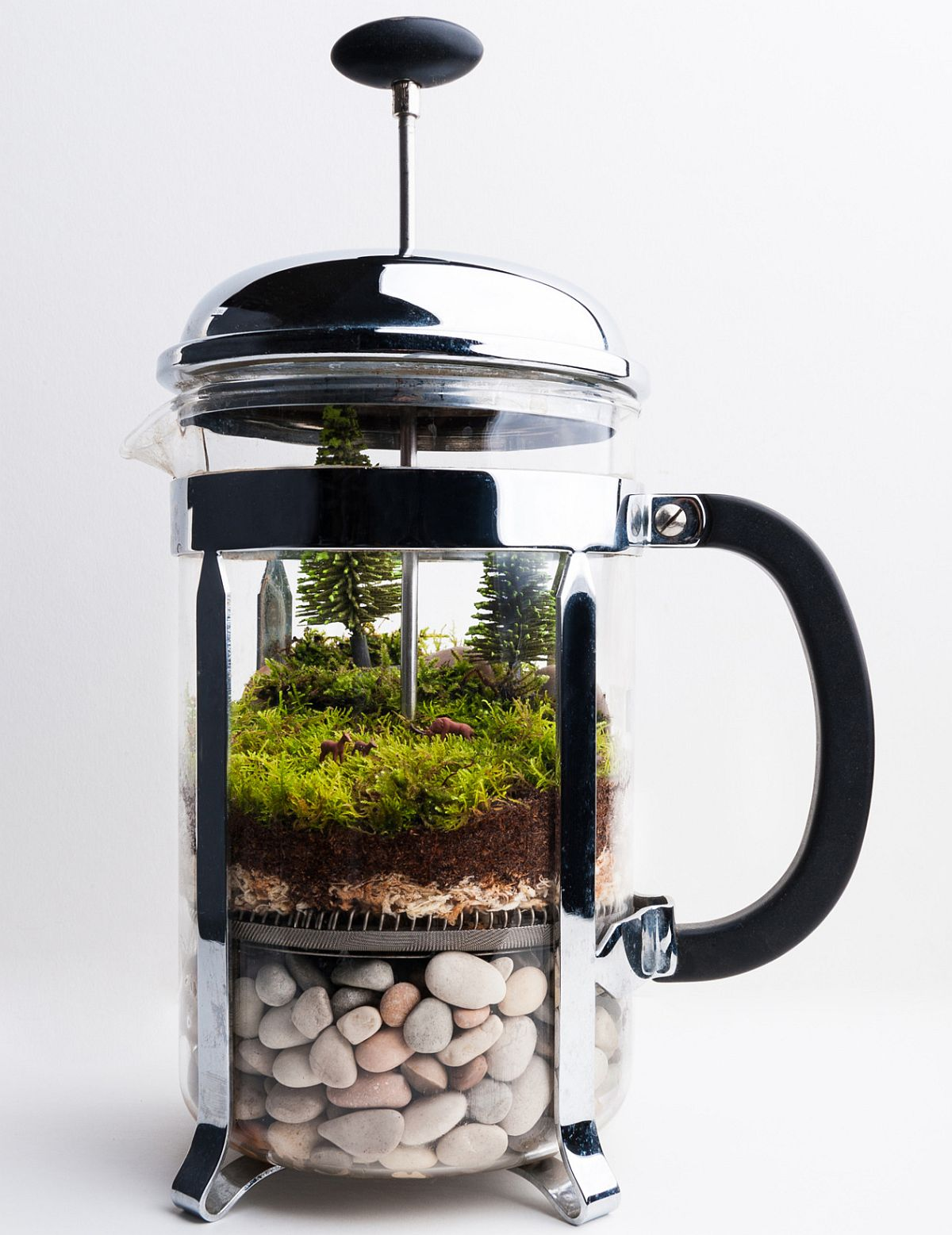 Old coffee pot turned into a lovely terrarium