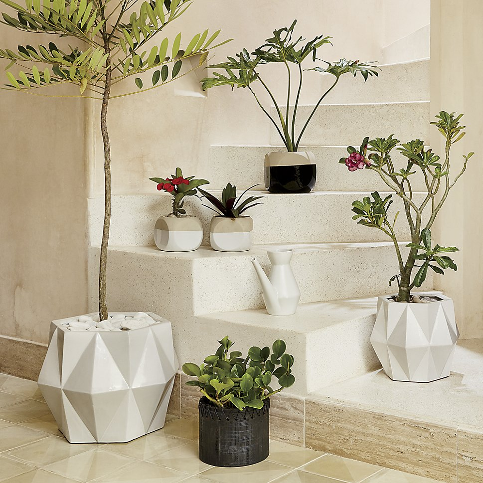 Sculptural-planters-make-a-statement