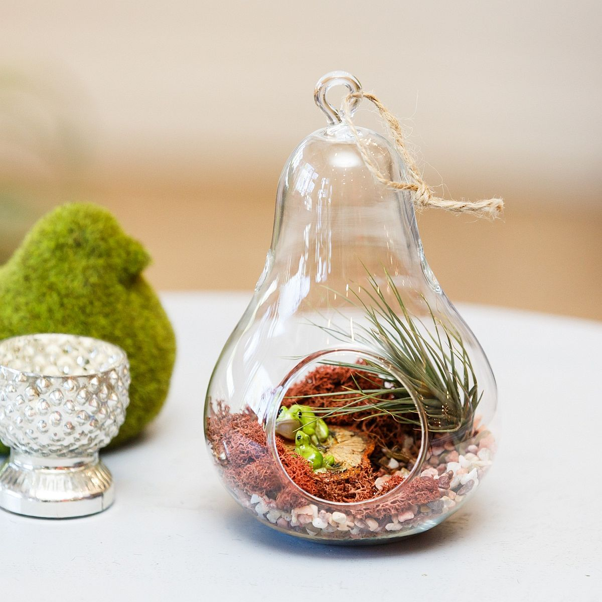 Simple and elegant glass terrarium