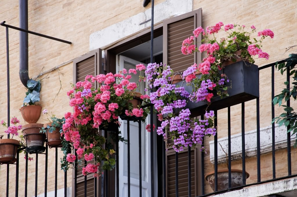 Small balcony with flowers on the iron railing