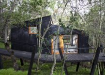 Sophisticated-and-contemporary-black-treehouse-217x155