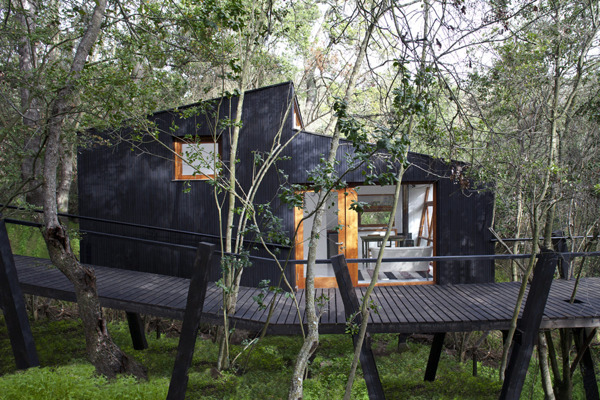 Sophisticated and contemporary black treehouse