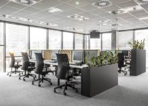 Sound-absorbing-partitions-and-indoor-plants-bring-better-acoustics-217x155