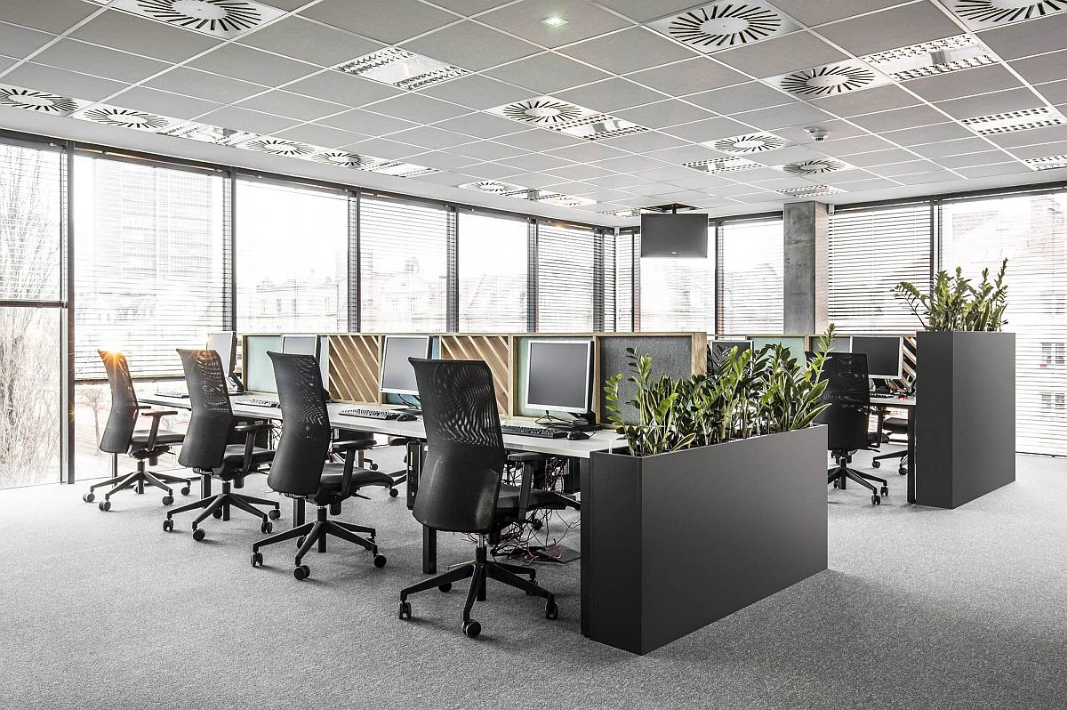 Sound absorbing partitions and indoor plants bring better acoustics