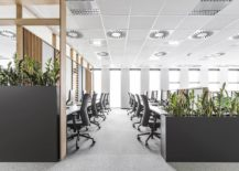 Space-savvy-and-acoustic-office-space-deisgn-217x155