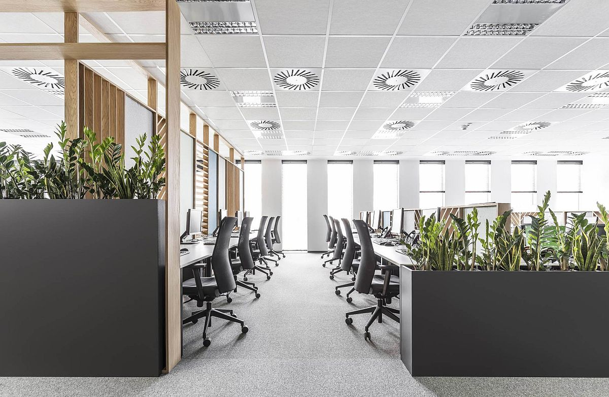 Space-savvy and acoustic office space deisgn