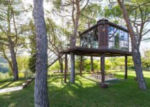 Spacious-and-luminious-treehouse-with-glass-walls-217x155