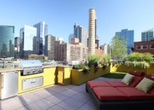 Vibrantly-colored-outdoor-rooftop-kitchen--217x155