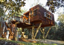 Wooden-treehouse-with-polished-look-and-dynamic-design-217x155