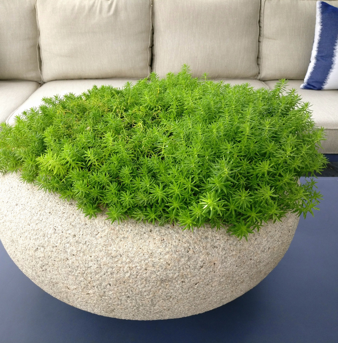 Less-is-more-in-a-modern-planter