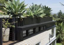 Look-at-the-unique-green-roof-of-the-Sydney-home-217x155