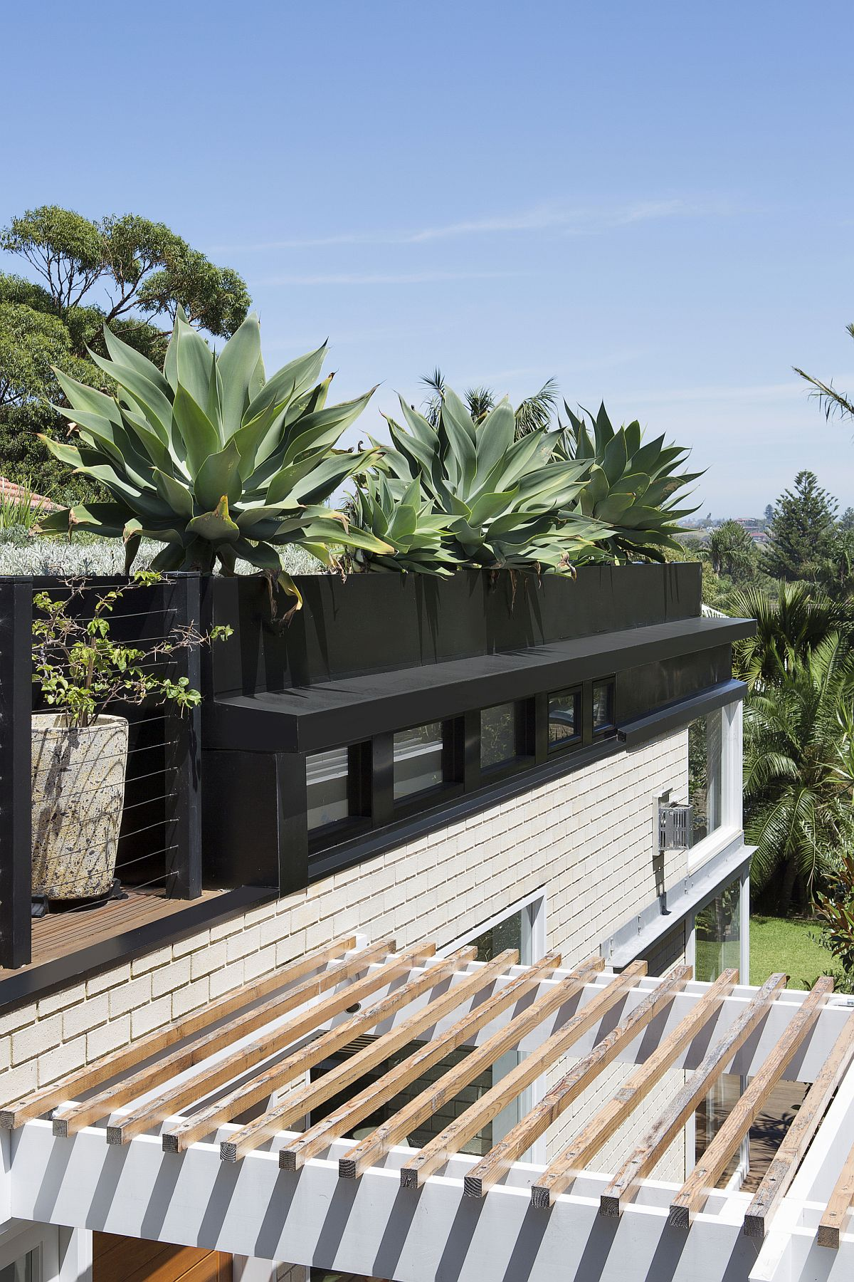 Look-at-the-unique-green-roof-of-the-Sydney-home