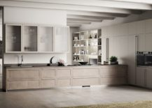 Lovely-wall-mounted-units-with-cool-wooden-cabinets-in-the-kitchen-217x155