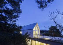 Pine-trees-around-the-house-become-one-with-its-overall-design-217x155