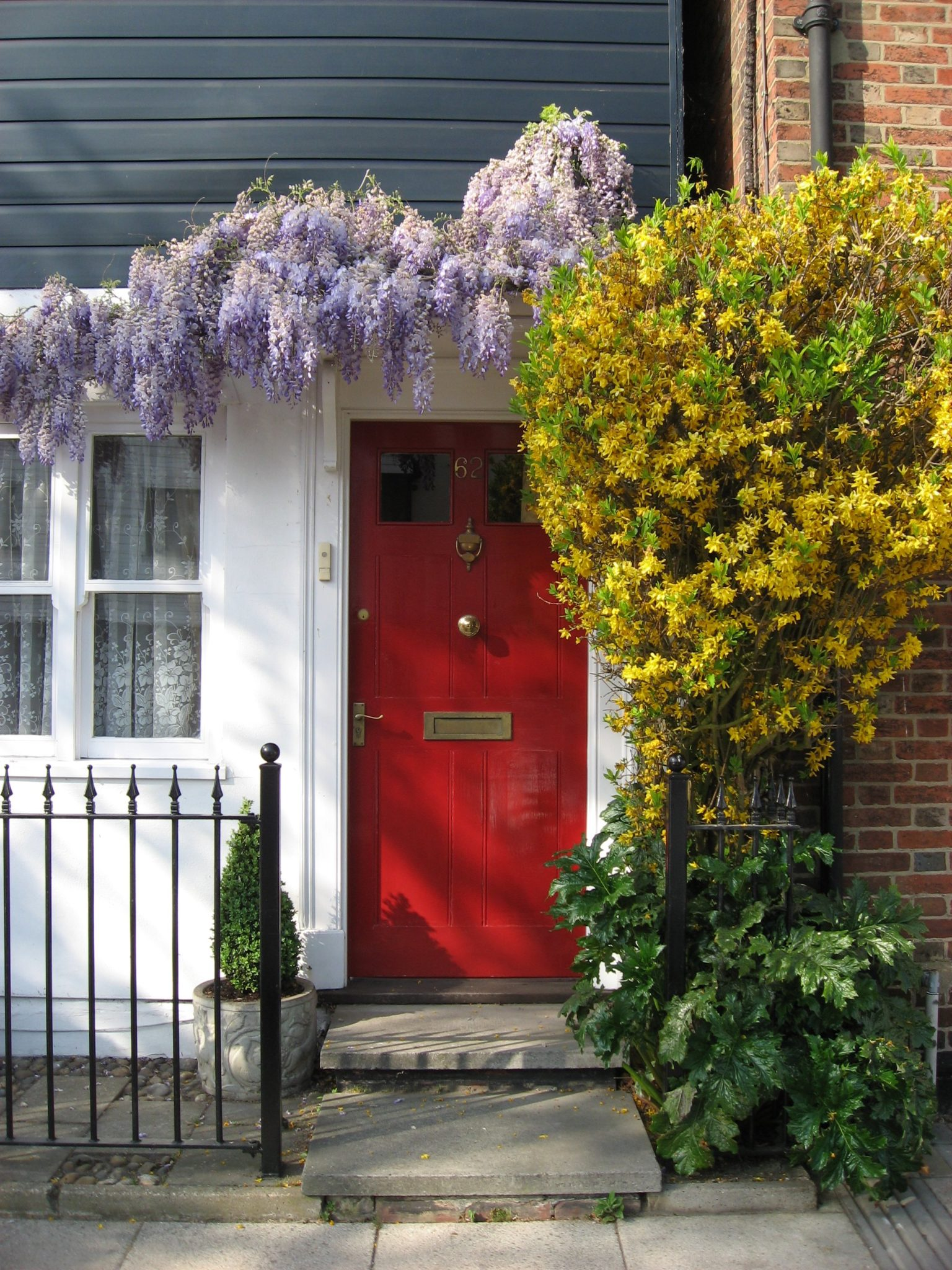 Red door surrounded by blooming lilac and yellow florals