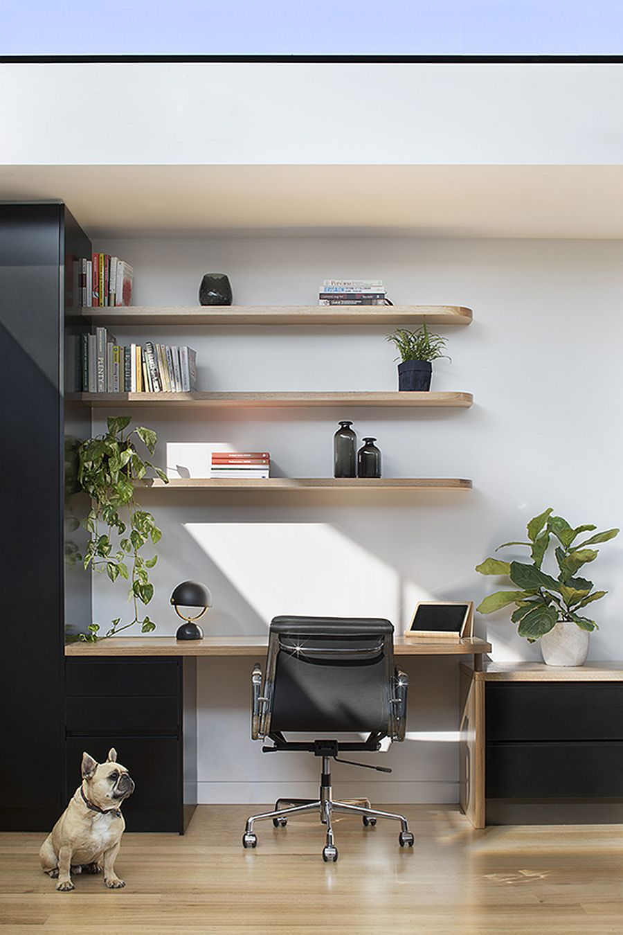 Small home workspace with sleek floating shelves above