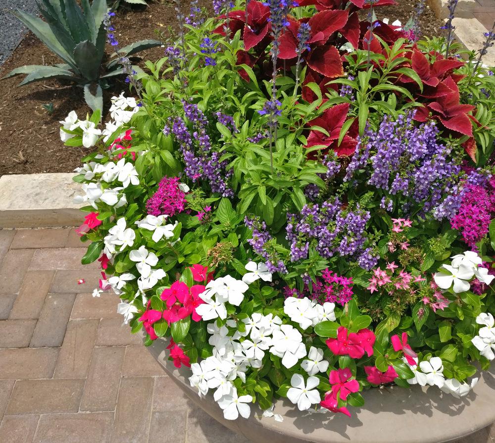 Switch-out-flowers-seasonally