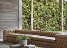 View-of-the-living-wall-outside-217x155