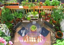 A-blooming-green-garden-perfect-for-an-urban-apartment--217x155