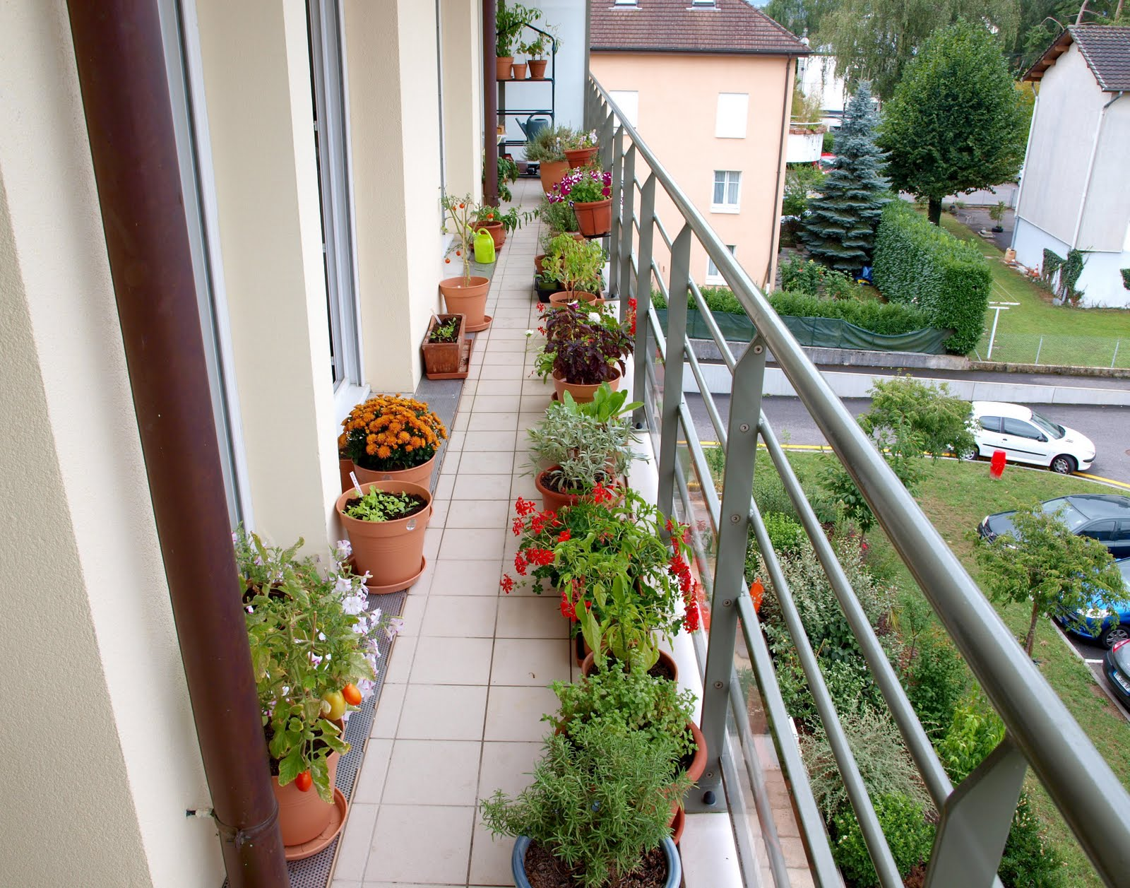 A long and narrow balcony garden