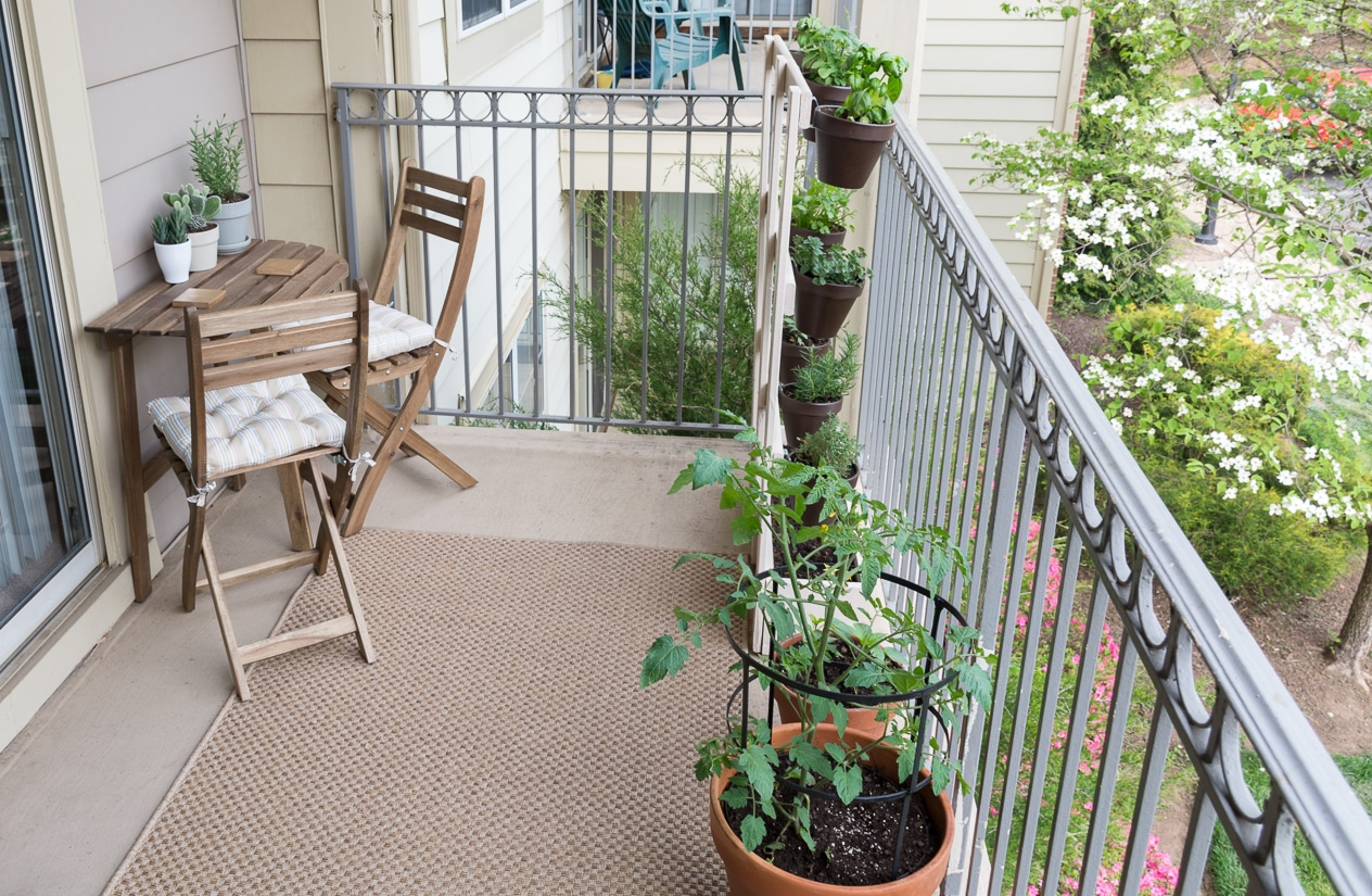 Urban oasis balcony gardens that prove green is always in for Best flowers for apartment balcony