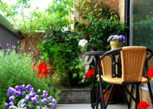 A-tiny-balcony-garden-as-a-serene-and-natural-space-217x155