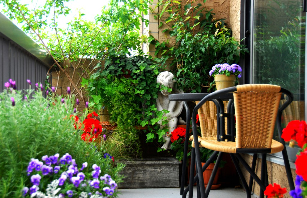 A tiny balcony garden as a serene and natural space