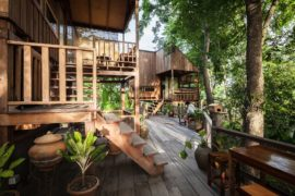 Backyard Jungle: Stunning Eco-Friendly Homes Engulfed in Forest Canopy!