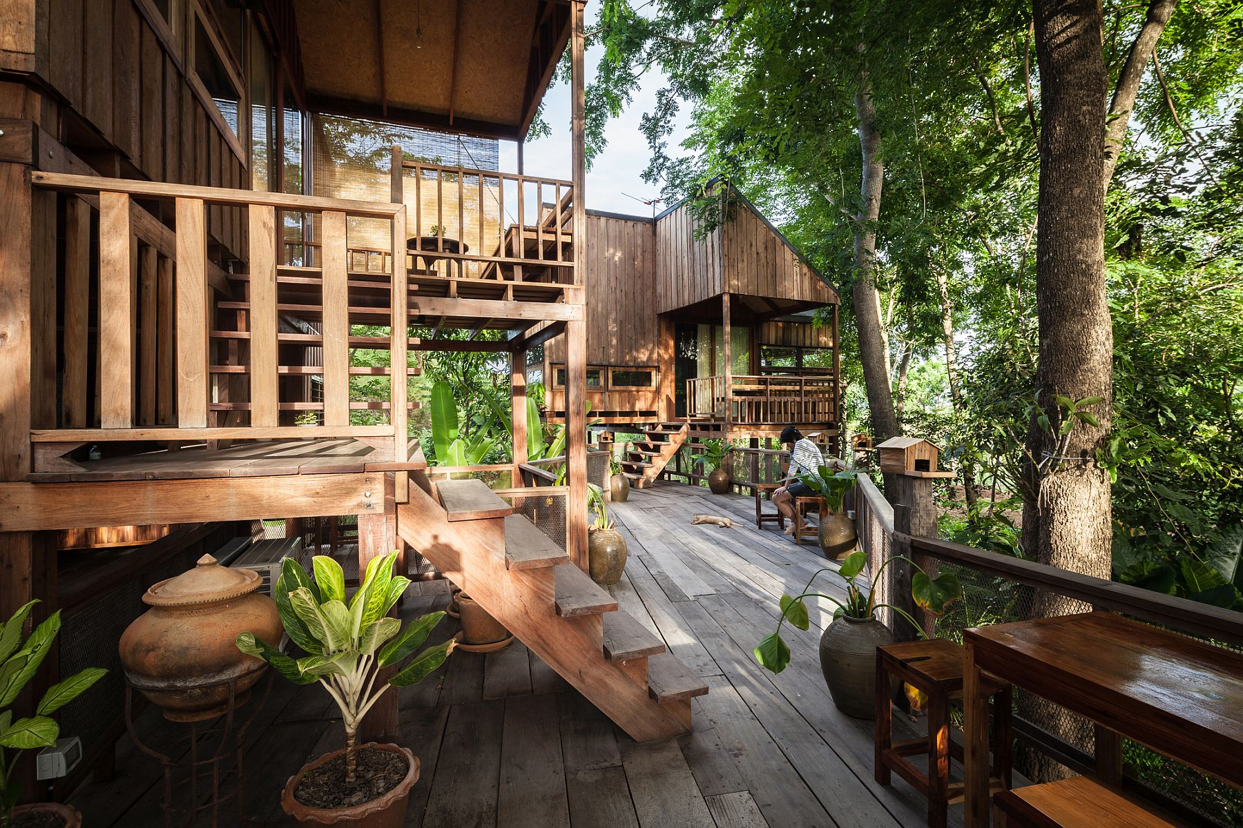 Backyard Jungle Stunning Eco Friendly Homes Engulfed In