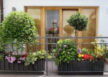 Balcony-garden-that-radiates-elegance-and-symmetry-217x155