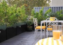 Balcony-garden-that-secures-the-spaces-privacy-217x155