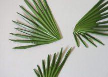 Cut-palm-leaf-options-217x155