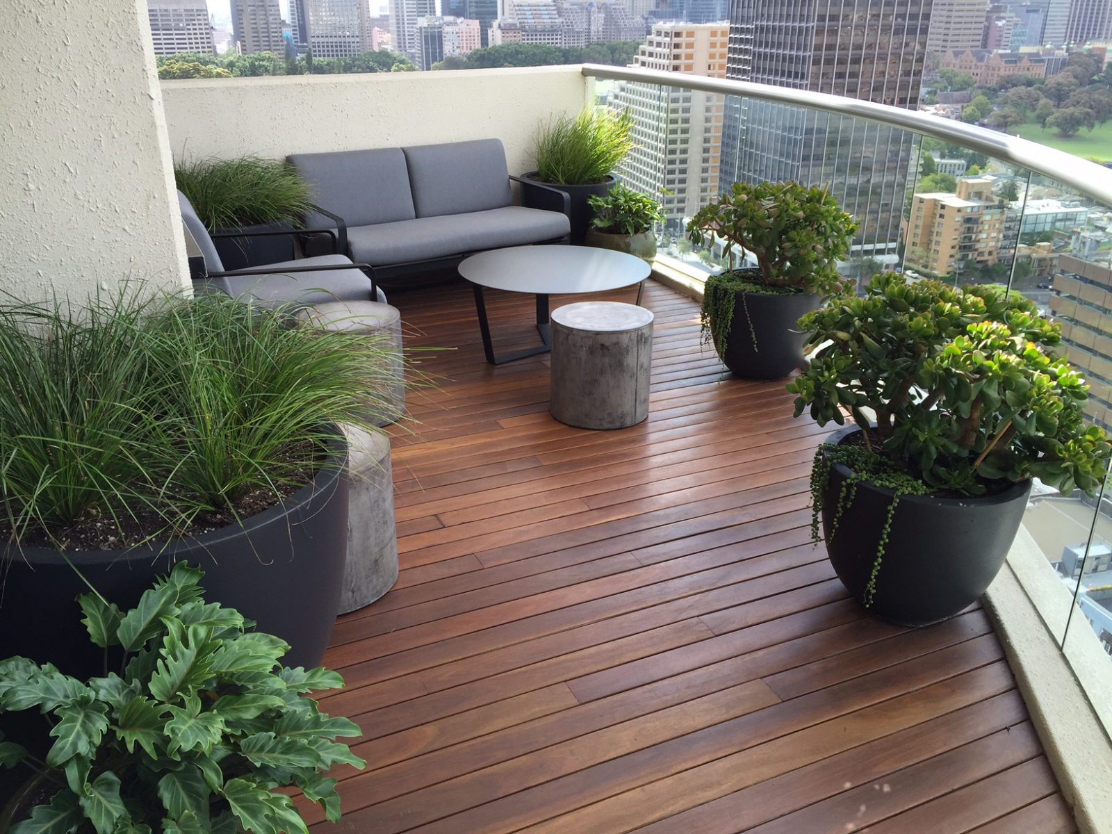 Elegant balcony garden with big bushy plants