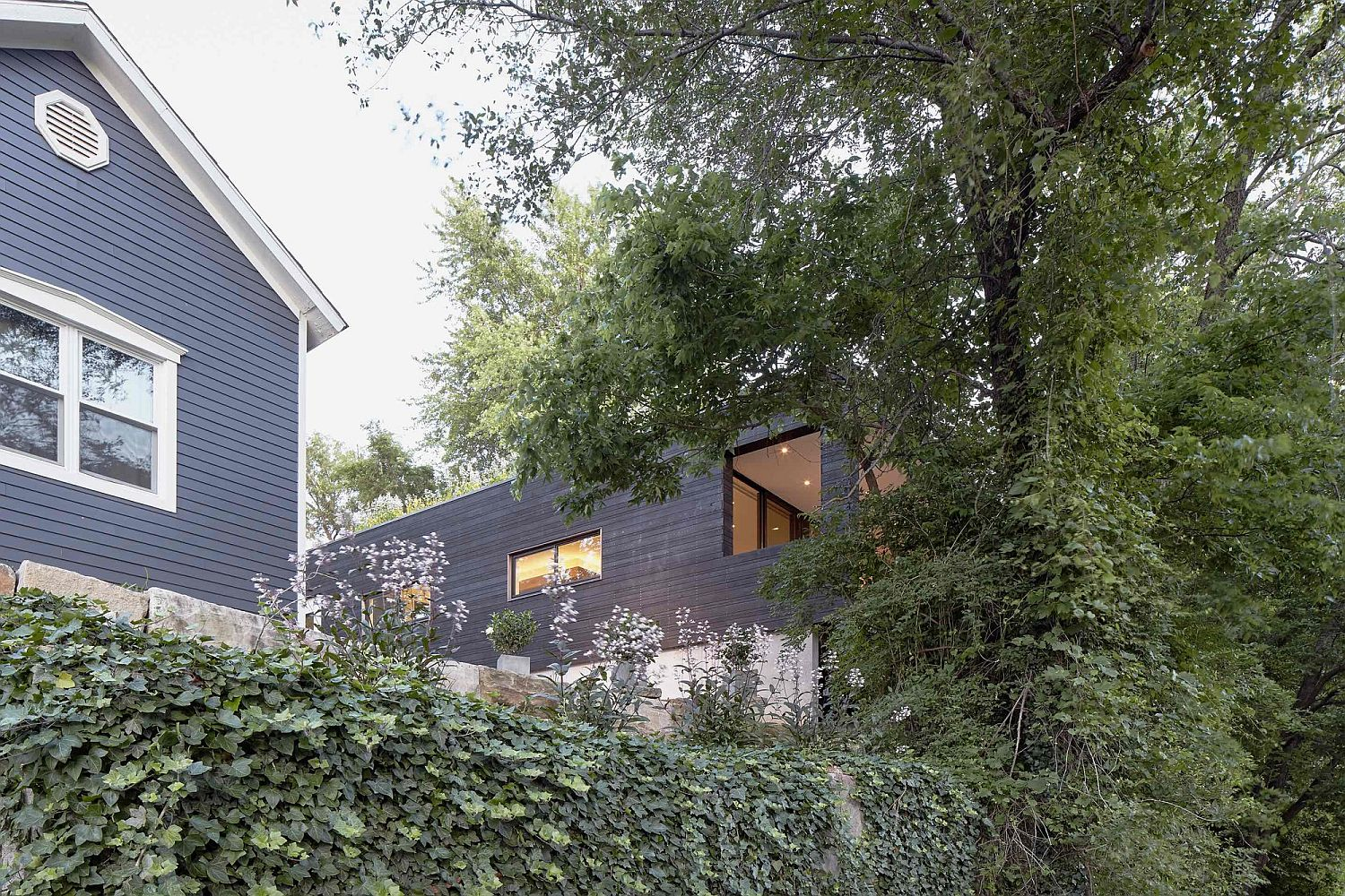 Natural-greenery-carefully-cloaks-family-home