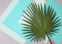 Palm and paper possibilities 217x155 DIY Tropical Art with Palm Leaves