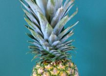 Pineapple power 217x155 Tropical Party Decor Made Easy
